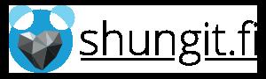Shungiitti